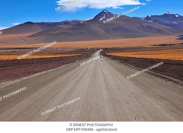 Biker, road, motorcycle, 2015, Desert, Atacama, Chile