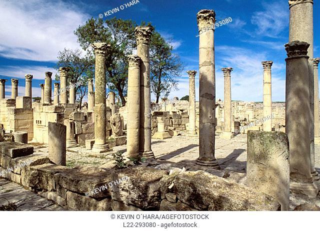'Schola des Juvenes' (young boys' school), ruins of old Roman city of Mactaris (Makthar). Tunisia