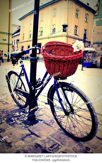 Beautiful white rose and a red basket on the bike at the Old Town in Krakow, Poland