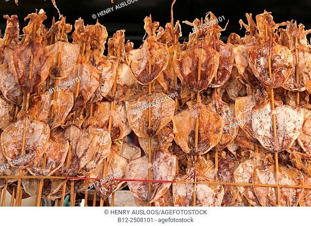 Night market; dried squids, Thailand