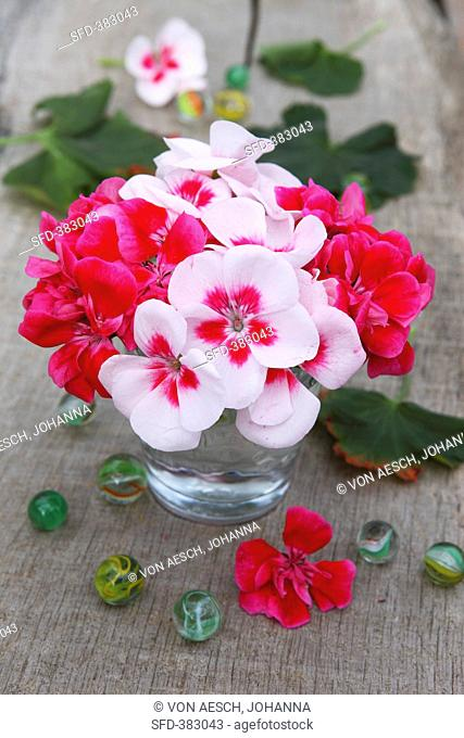 A bunch of geraniums and glass marbles on a wooden table