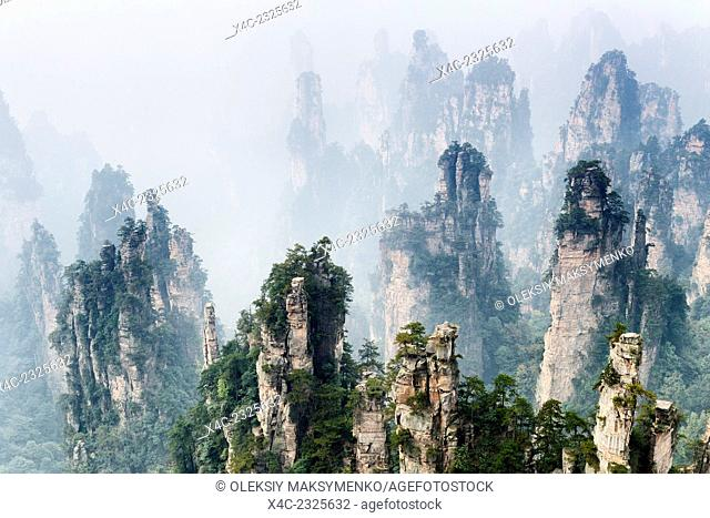 Mountain spires rising from fog at Zhangjiajie National Forest Park, Zhangjiajie, Hunan, China