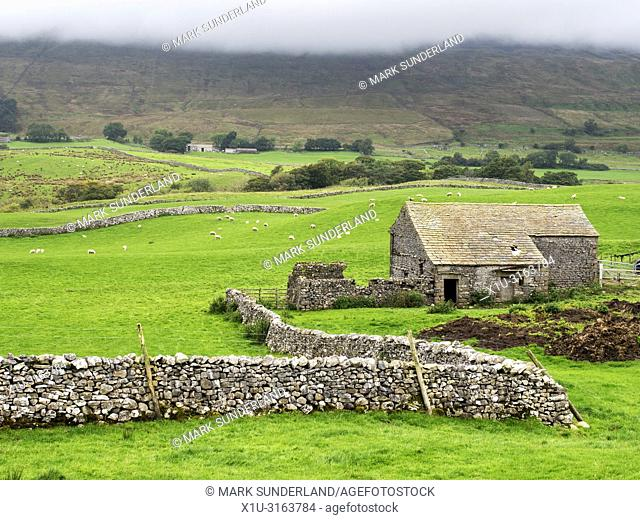 Field barn and dry stone walls below Whenside shrouded in low cloud Ribblehead Yorkshire Dales England