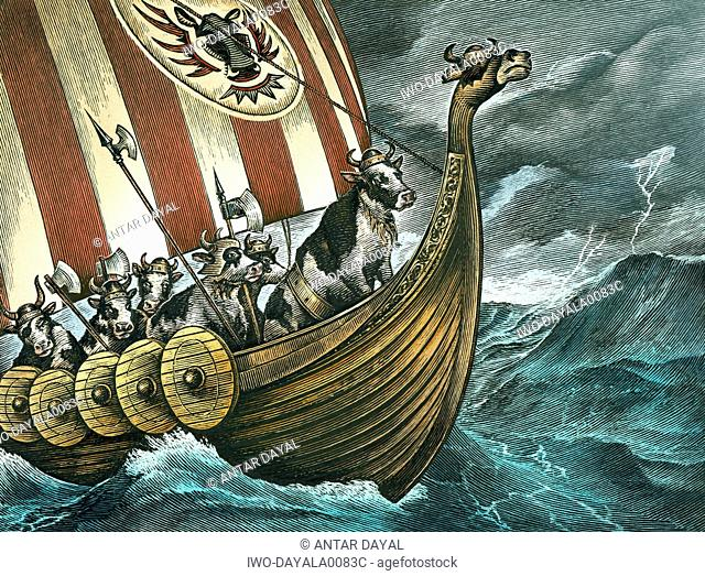 Viking cows at sea