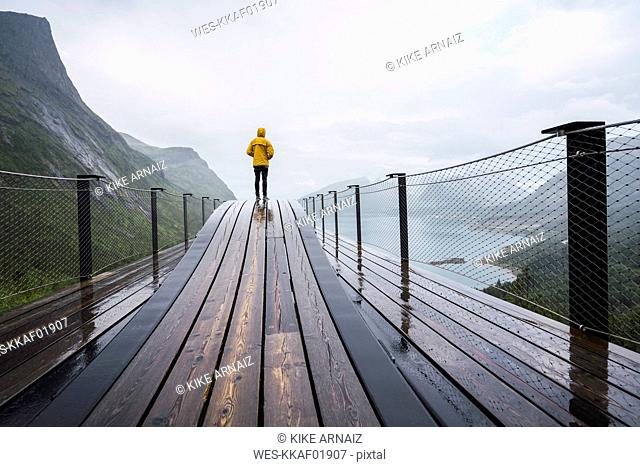 Norway, Senja island, rear view of man standing on an observation deck at the coast
