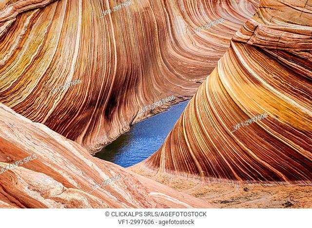 The Wave rock formation,Coyote Buttes, Paria Canyon Vermillion cliffs, Arizona, USA