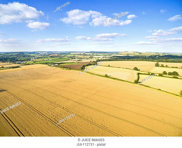 Scenic aerial landscape view of golden barley fields in sunny rural countryside