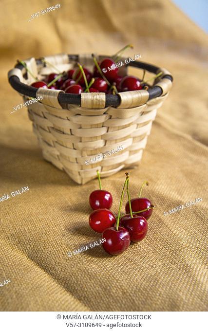 Basket of cherries. Still life