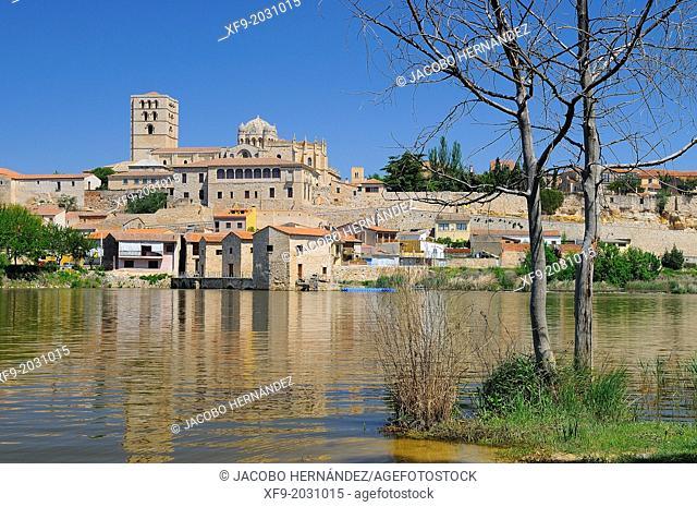 Zamora.Castilla y León.Spain