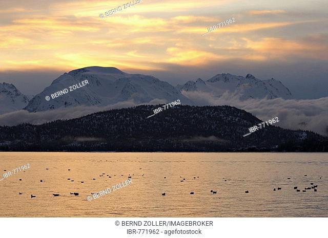 Sunrise at Kachemak Bay State Park, Kenai Peninsula, Alaska, USA