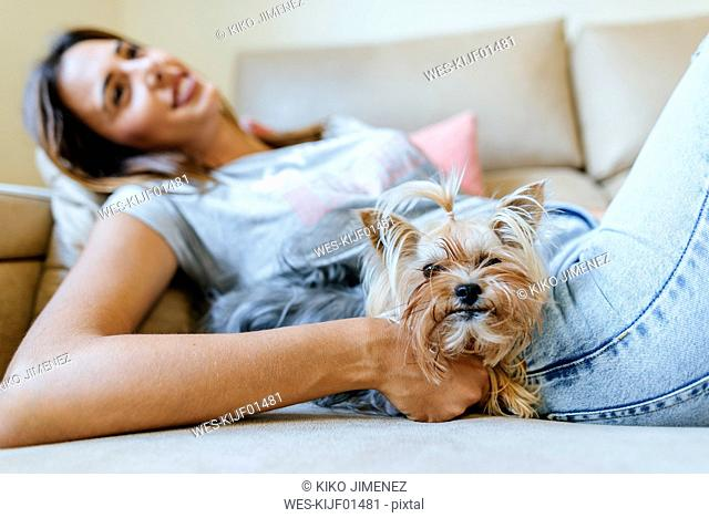Portrait of Yorkshire Terrier lying on the couch with owner