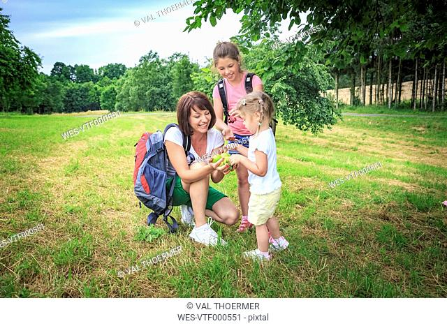 Mother giving apples, mother and daughters on meadow during hiking