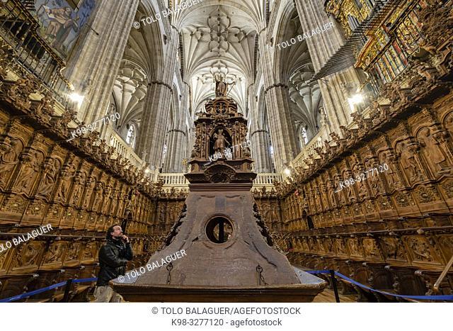 coro, Catedral de la Asunción de la Virgen, Salamanca, comunidad autónoma de Castilla y León, Spain