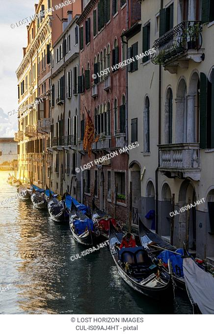 A row of gondolas and the Island of San Giorgio, Venice, Veneto, Italy