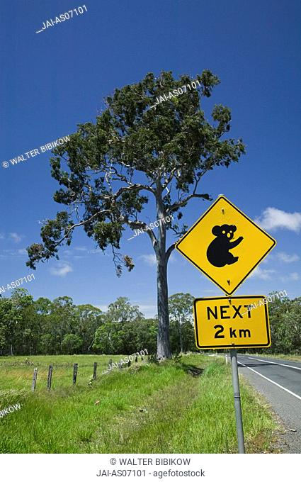Australia, Queensland, Fraser Coast, Maryborough, Koala Crossing Sign on the Bruce Highway