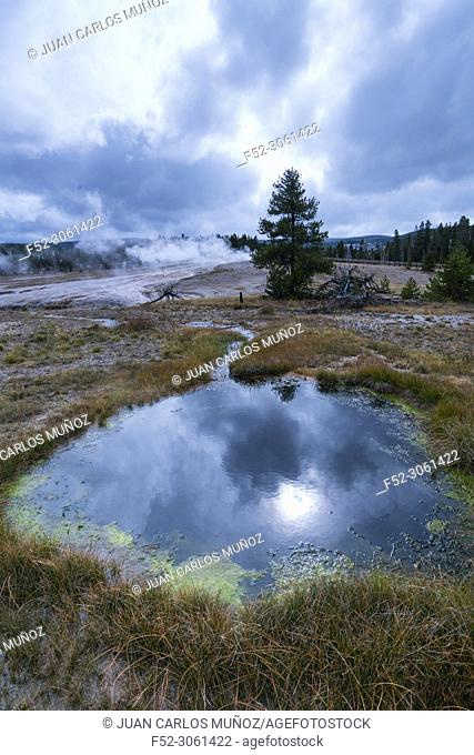 Hot Spring, Old Fatithful Area, Yellowstone National Park, Unesco World Heritage Site, Wyoming, Usa, America