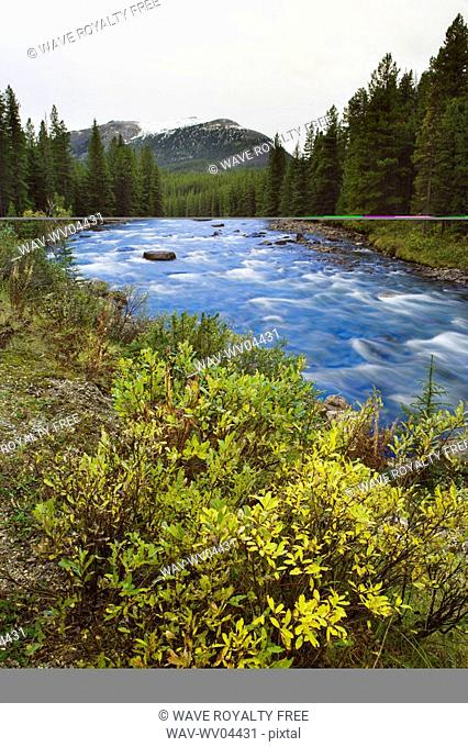 Maligne River - Jasper National Park, Alberta, Canada