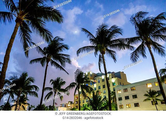 Florida, Miami Beach, Ocean Drive, Lummus Park, coconut palm trees, Netherland, hotel, dusk, evening, night, moon