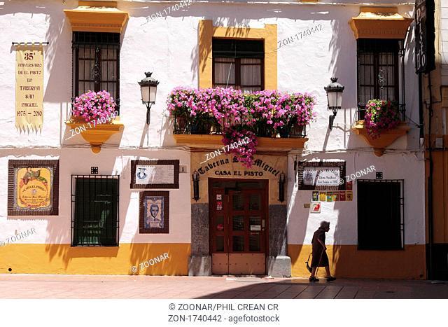 Taberna san Miguel El Pisto Cordoba