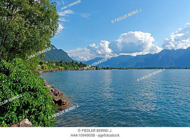 Europe, Switzerland, CH, Vaud, Veytaux-Chillon, Quai, Alfred Chalanat, lake Geneva, Leman, trees, mountains, scenery, landscape, plants, lake, place of interest