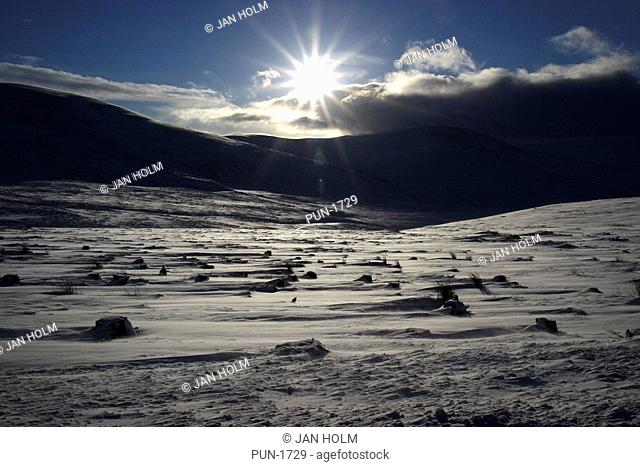 Snow on Cairngorm mountains