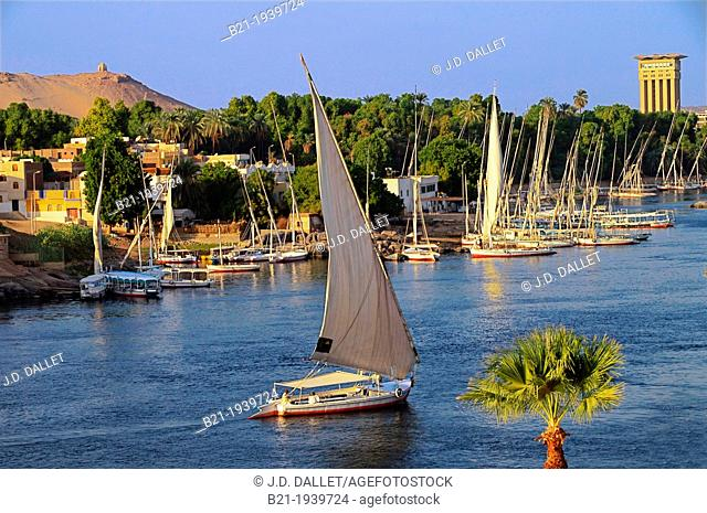 Felucca on the Nile river, Elephantine and Kitchener Islands, at Aswan, Egypt
