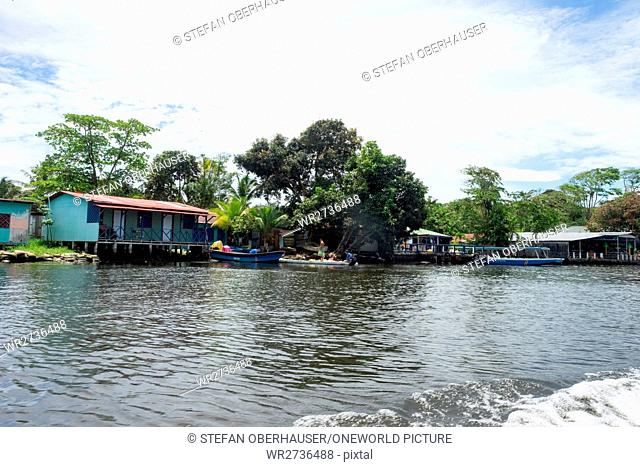 Costa Rica, Limón, Tortuguero, Tortuguero National Park, view of Tortuguero from the water