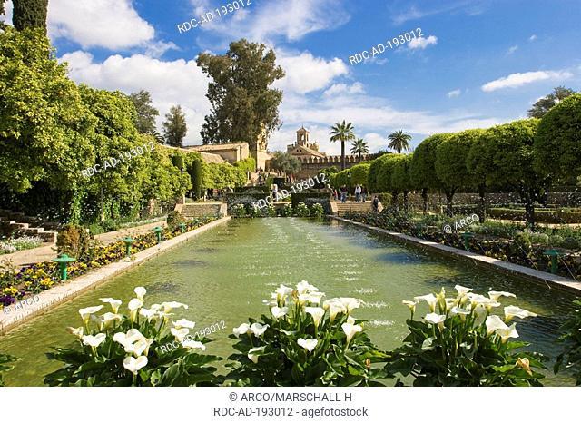 Garden, Alcazar de los Reyes Cristianos, Cordoba, Andalusia, Spain