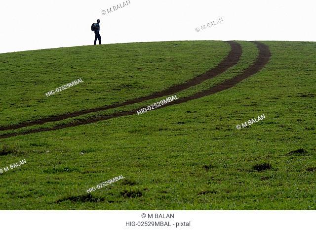 OPEN GRASSLANDS OF VAGAMON, IDUKKI DIST