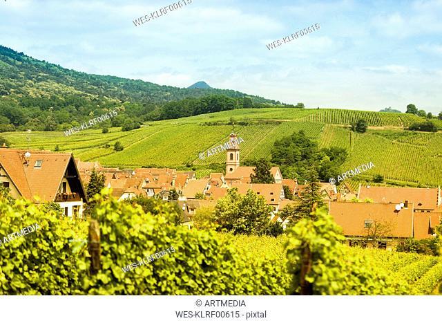 France, Alsace, Riquewihr, Haut-Rhin, Alsatian Wine Route, Riquewihr