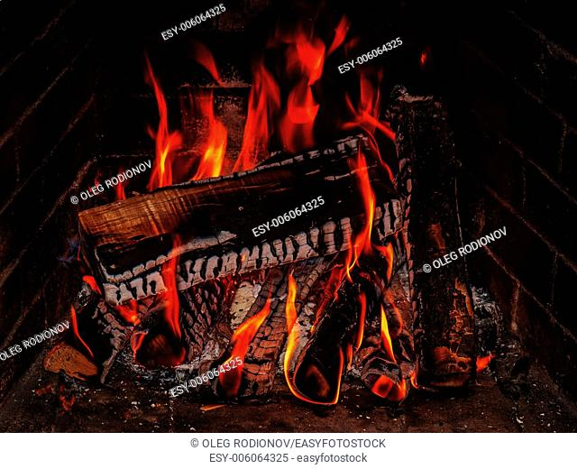 Fireplace with birch firewood and flame. Closeup