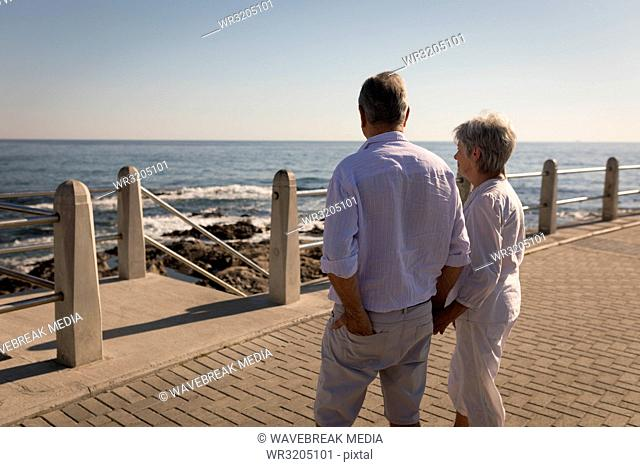 Senior couple standing near sea side