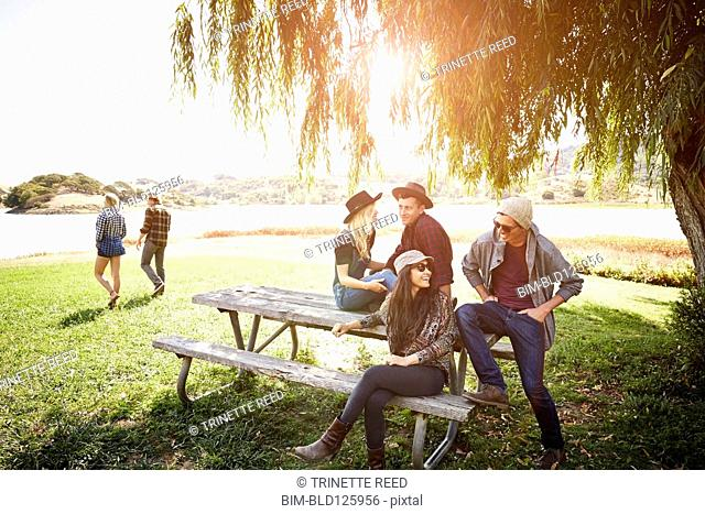 Friends relaxing together on picnic table