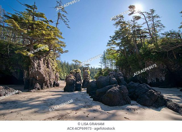 Sea Stacks on the beach of San Joseph Bay, in Cape Scott Provincial Park on the northern tip of Vancouver Island, BC