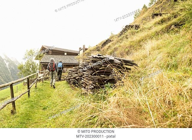 Rear view of two mature hikers walking on footpath, Austrian alps, Carinthia, Austria