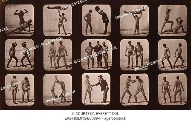 Consecutive images of men doing acrobatics, gesturing, and posturing. From Eadweard Muybridge's, THE ATTITUDES OF ANIMALS IN MOTION, 1881