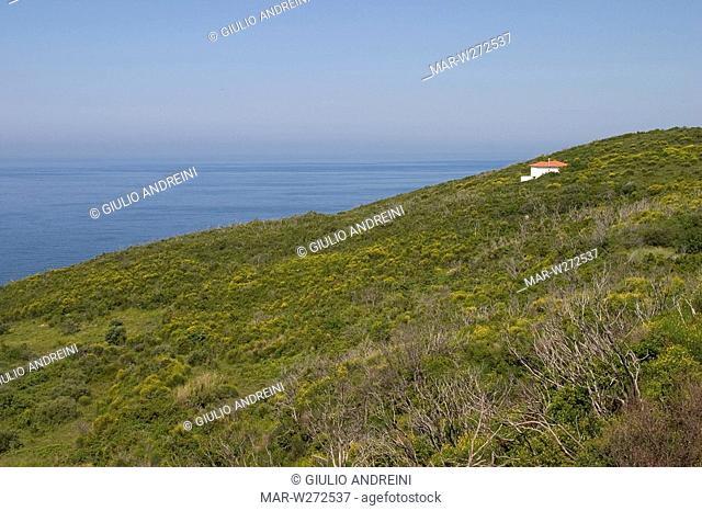 europe, greece, pelion, mortia area