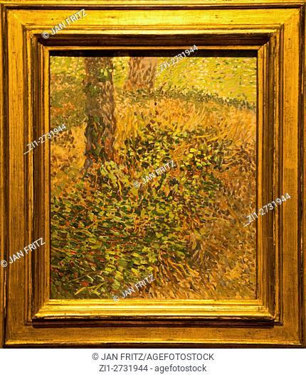 'undergrowth, 1887, van gogh