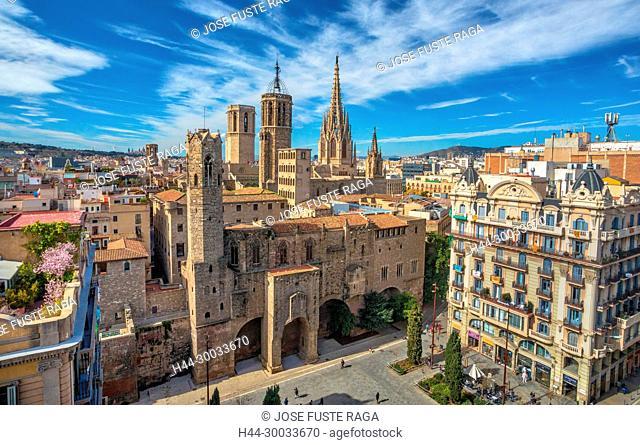 Barcelona Cathedral, Barcelona City, Ciutat Vella, Gotic district, skyline, spain
