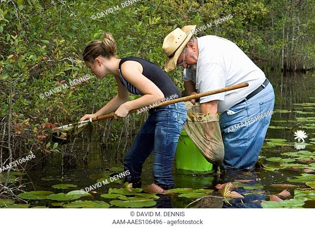 Collecting aquatic salamanders in flatwoods pond for amphibian survey, Osceola National Forest, Baker Co. FLorida