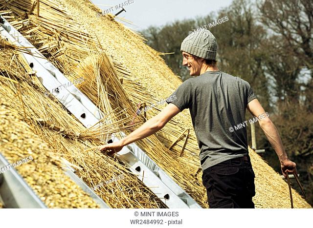 Young man thatching a roof, standing on a ladder