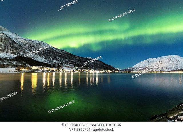 Northern lights over the fjord. Lokvoll, Manndalen, Kafjord, Lyngen Alps, Troms, Norway, Lapland, Europe