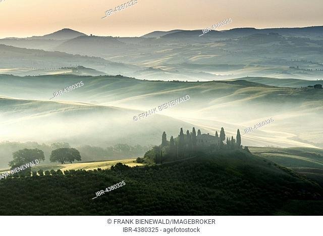Typical green Tuscan landscape in Val d'Orcia, farm on hill, fields, cypress (Cupressus sp.) trees and morning fog at sunrise, San Quirico d'Orcia, Tuscany