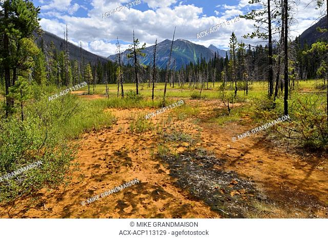Paint pots. The Canadian Rocky Mountains, Kootenay National Park, British Columbia, Canada