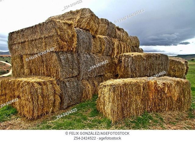 Hay bales at Segovia, Castile and Leon, Spain