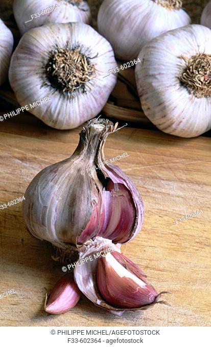 Garlic. Tuscany. Italy