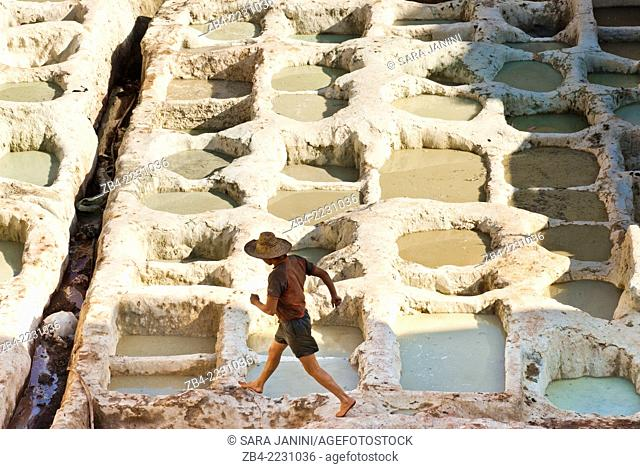 Worker at the Chouwara Tannery, Fez or Fes, Morocco, North Africa
