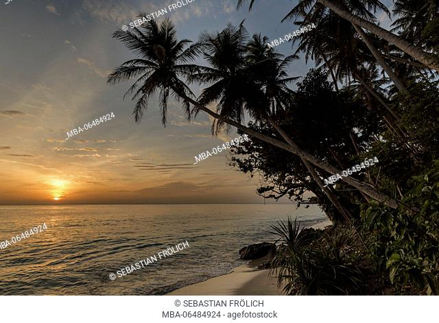Romantic sunrise in the famous Sumurtiga beach on the comfortable island Pulau Weh near Sumatra. In the background the rising sun, in the foreground palms