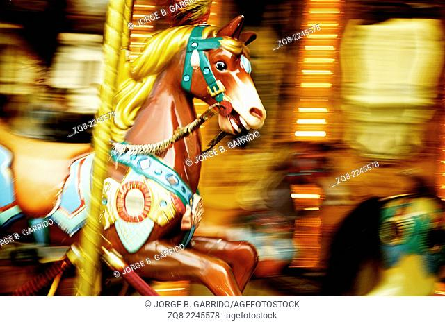 Carousel. Horses florence italy