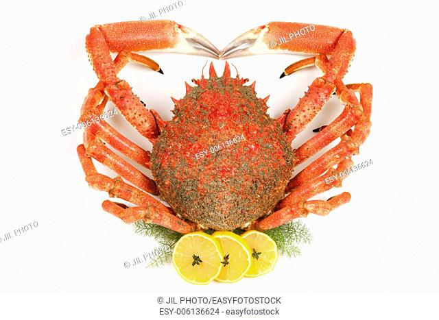 Spiny Spider Crab with lemon and fennel
